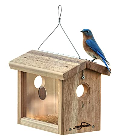 Kettle Moraine Cedar Hanging Bluebird Mealworm Feeder