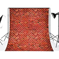 DODOING 10x10FT Vinyl Red Brick Wall Photography Backdrop Retro Brick Photo Background for Studio Prop 3x3 Meters