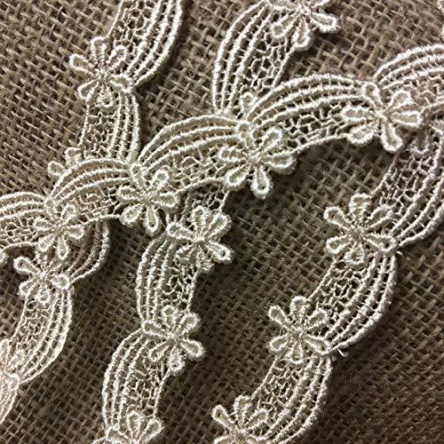 - Lace Trim Scallops daisy Drapes Venise 3/4