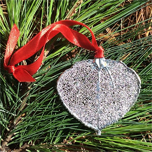 - LCD Designs Real Colorado Aspen Leaf ORNAMENT, Large,Lacy Silver dipped, genuine leaf