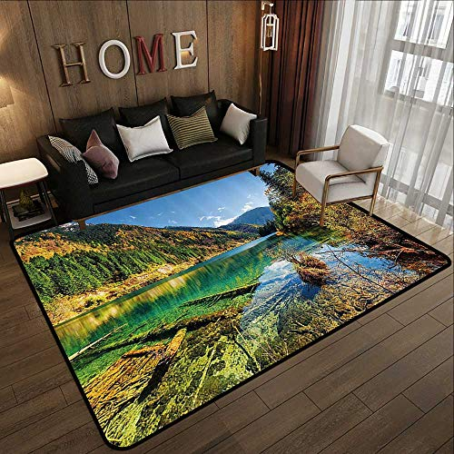 (Rugs,Outdoor,Scenic View Arrow Bamboo Lake Among Mountains and Colorful Fall Woods China,Blue Green Yellow 47
