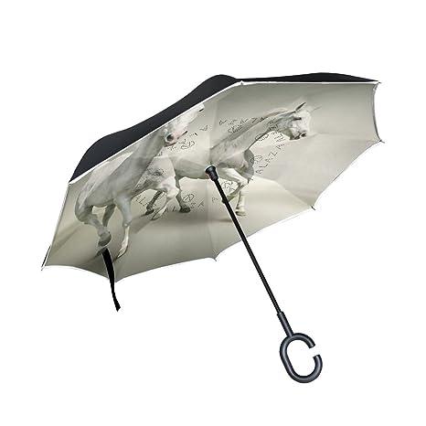 COOSUN Barniz caballo doble del paraguas invertido inversa para el coche y el uso al aire