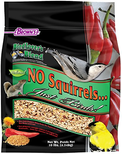 F.M.Brown's Bird Lover's Blend No Squirrels...Just Birds! Food, 10 lb