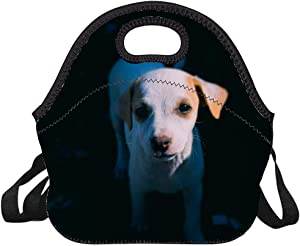 Neoprene Lunch Bag American Pit Bull Terrier Puppy Insulated Picnic Tote Boxes Backpack for Women Men Kids Detachable Strap Style with Zipper