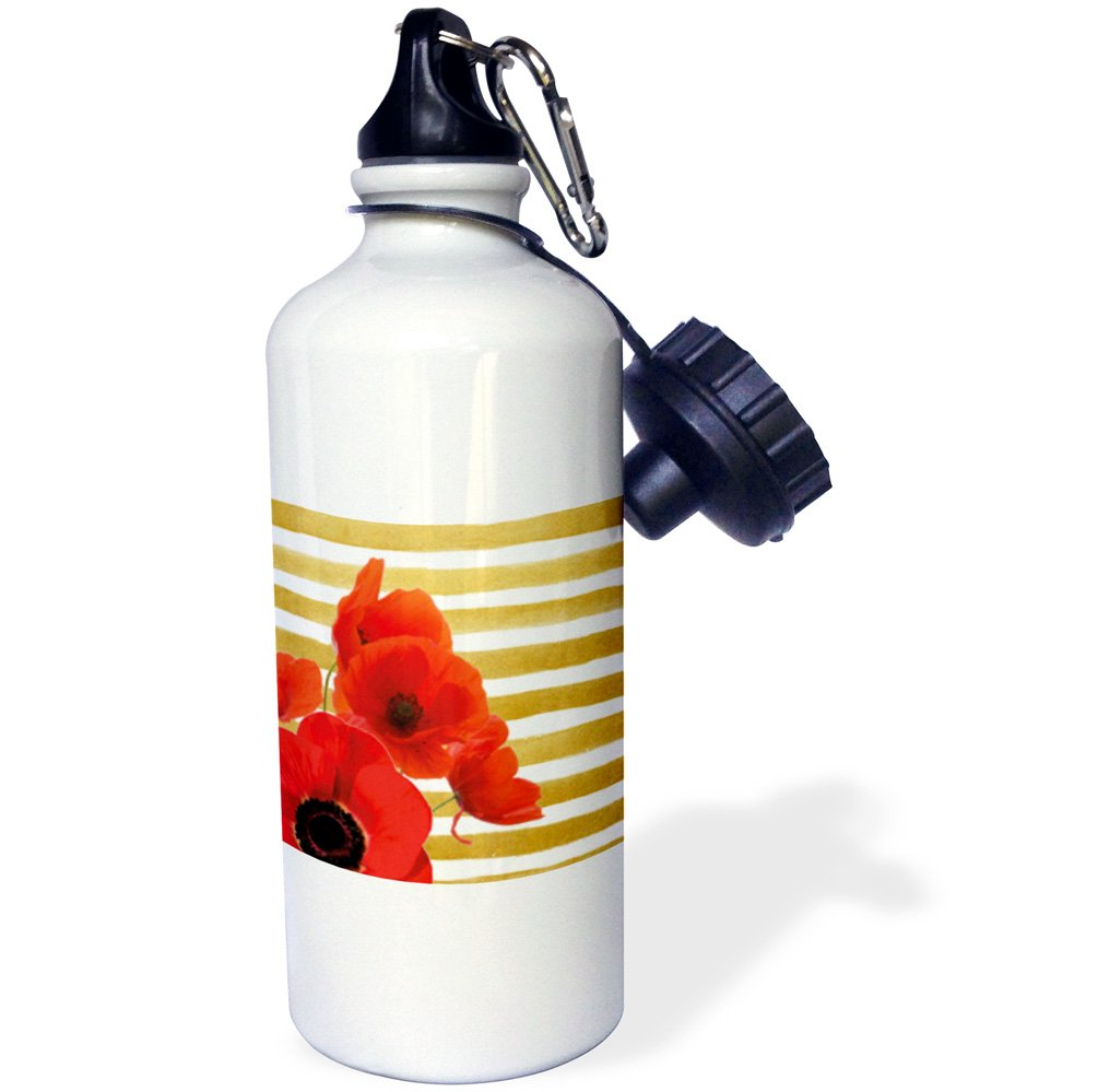 3dRose wb/_238384/_1 Dont Make Me Use My Baseball Mom Voice Water Bottle