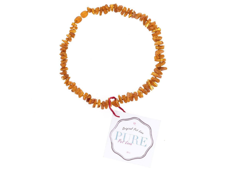 Collier d'ambre PetLove, fabriqué à 100% en ambre de la mer Baltique, pour chiens et chats Collier d'ambre PetLove