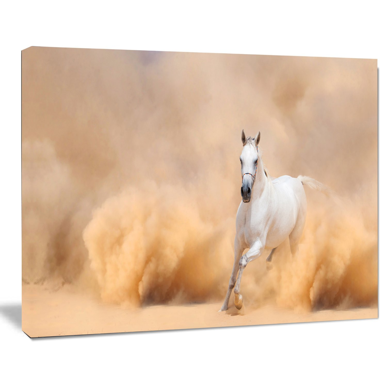 40x20 Tan Designart Arabian Horse in Desert Storm-Photography Canvas Art Print-40x20