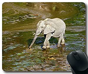 Animal-Elephant Mousepad,Custom Rectangular Mouse Pad by runtopwell