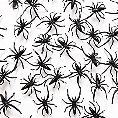 Fun Express Plastic Halloween Spiders Party Favor by Fun Express