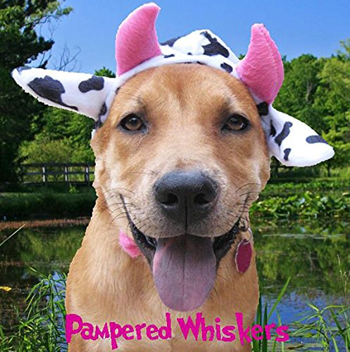Pampered Whiskers Mad Cow Costume Dogs Cats (Medium 12-15
