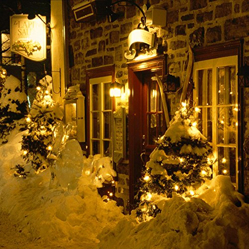 CrazyFire LED String Lights, Fairy String Light 33ft 100 LEDs Waterproof Decorative Starry Lights for Bedroom, Patio, Parties (Copper Wire Lights, Warm White) by CrazyFire (Image #5)
