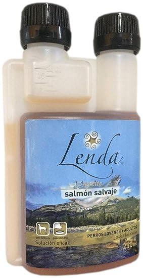 LENDA Aceite Natural de salmón Salvaje líquido Omega 3, EPA y DHA para Perros y Gatos - 250 ML: Amazon.es: Productos para mascotas