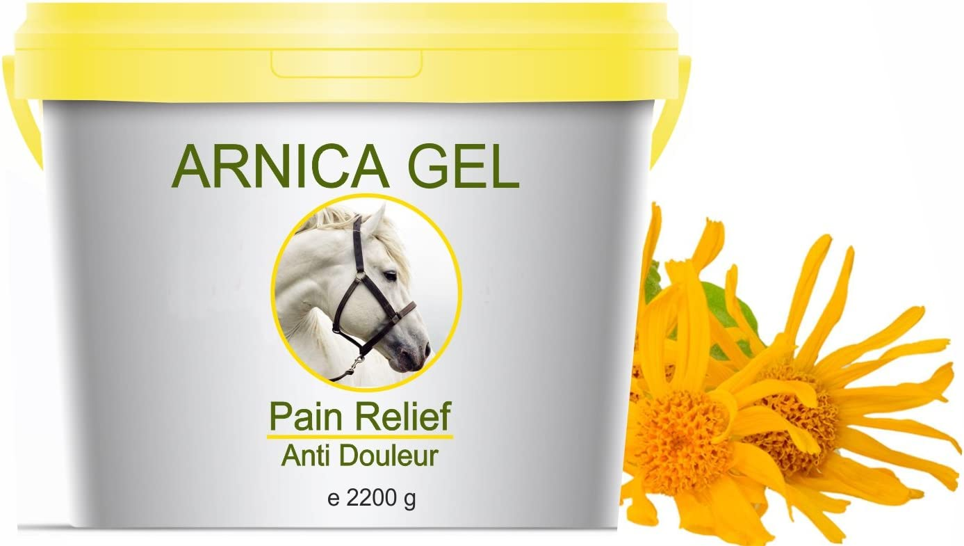 Gel de Árnica Montana 90% Caballos 2200g Acción Rápida Remedio herbal 100% Natural