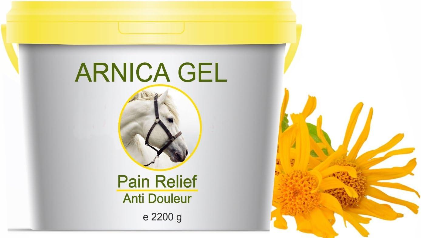 Gel de Árnica Montana 90% Caballos 2200g Acción Rápida Remedio herbal 100% Natural