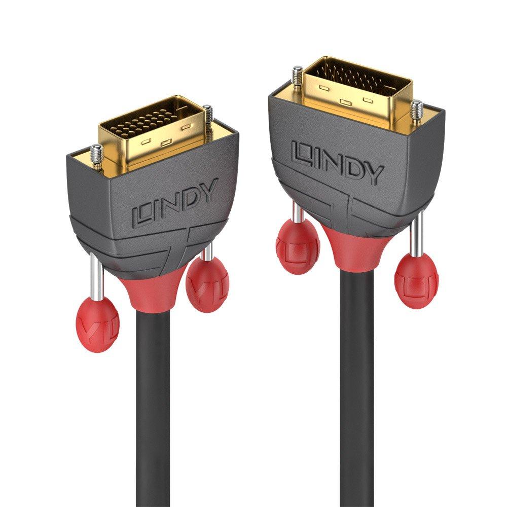 Lindy 36222 Cable DVI 2 m DVI-D Negro - Cables DVI (2 m, DVI-D, DVI-D, Macho, Macho, Negro)