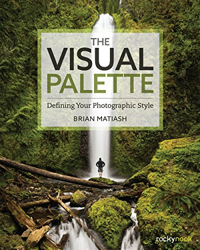 The Visual Palette: Defining Your Photographic Style (Style Palette)