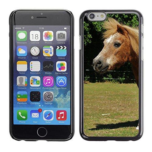 """Premio Sottile Slim Cassa Custodia Case Cover Shell // F00014514 cheval // Apple iPhone 6 6S 6G 4.7"""""""
