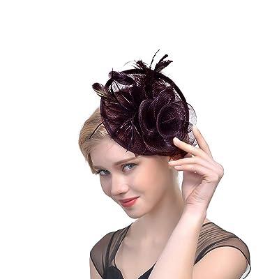 dressfan Vintage Net Yarn Hat Plumas de plumas de avestruz Fascinators para la boda Banquete Festival Cóctel: Ropa y accesorios