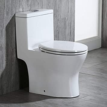 White One-Piece Dual Flush Wall Hung Elongated Toilet Bowl Custom Height/&Seat