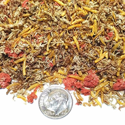 Food Bloodworms Fish (Aquatic Foods Inc. Gourmet Blend - 5-Type Freeze Dried Loose Blackworms, Tubifex Worms, Beef Heart, Bloodworms, White Worms. GB-520-10gram)
