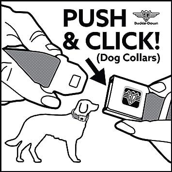 Amazon Com Buckle Down Marvel Comics Dog Collar Ava Marvel Comics