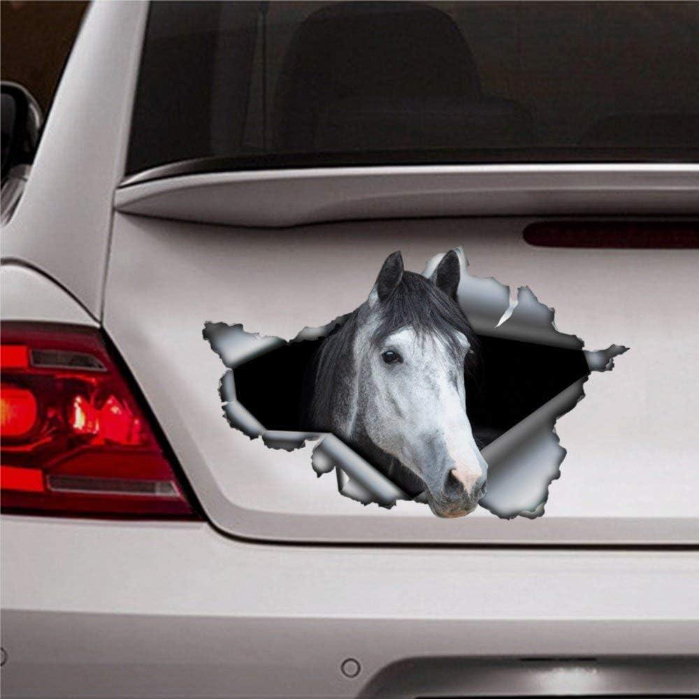DONL9BAUER - Adhesivo de vinilo para coche, diseño de caballo árabe, color gris