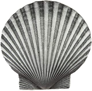 product image for Acorn Manufacturing DPGPP Artisan Collection Large Scallop Knob44; Antique Pewter