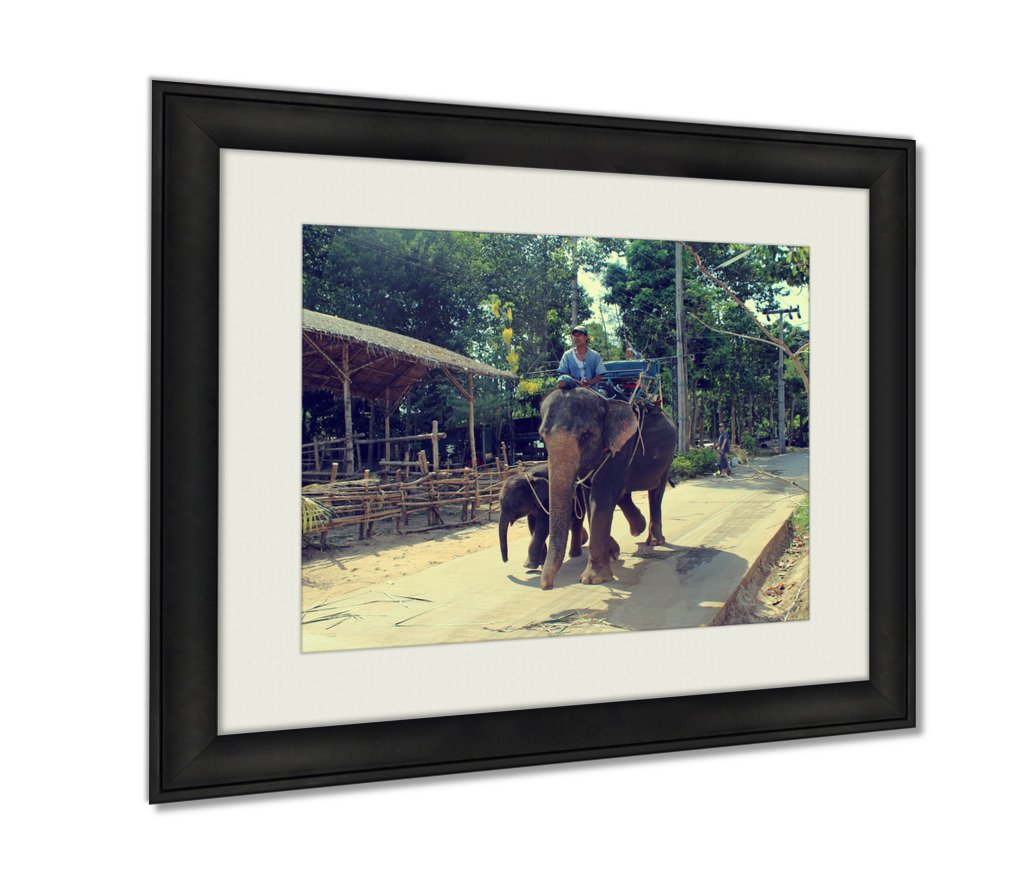 Ashley Framed Prints Koh Samui Thailand 2 April 2013 Thai Man Riding Elephant His Artwork Decoration Photo Print Wood Frame with Matte, kitchen living room bedroom 20x25 art by Ashley Framed Prints