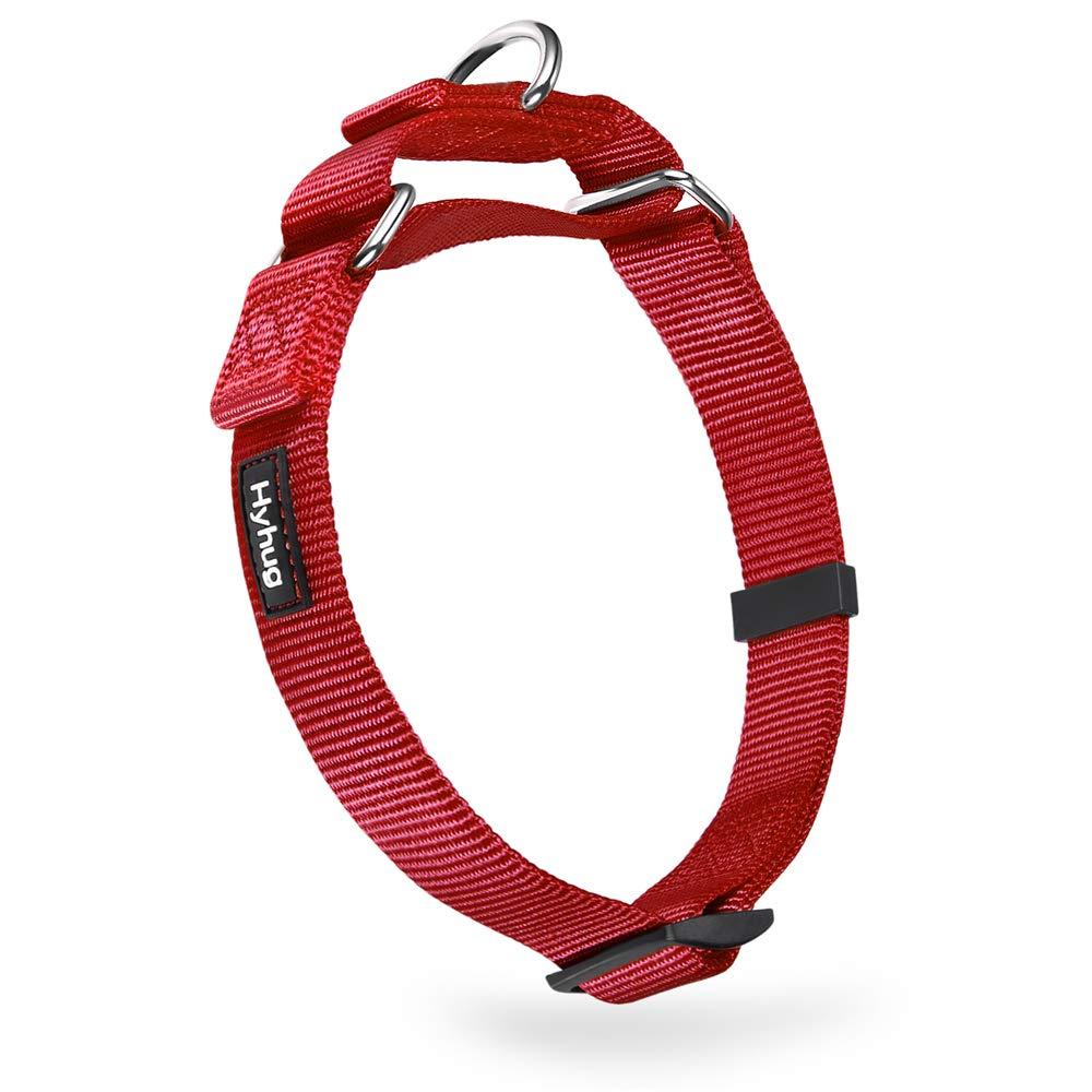 Red Medium Red Medium Premium Heavy Duty Nylon Anti-Escape Martingale Medium Boy and Girl Dog Collar Walking Daily Use.(Medium,Red)