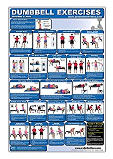Laminated Dumbbell Exercise Poster/Chart - Shoulders and Arms - Created by Fitness Experts with University Degrees in Exercise Physiology etc. - ... - Fitness Poster - Dumbbell Workout Chart (0973941138) | Amazon Products