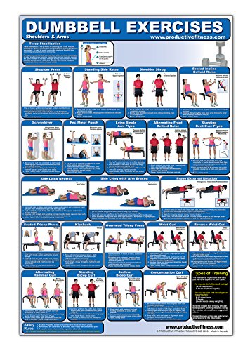 Laminated Dumbbell Exercise Poster/Chart – Shoulders and Arms – Created by Fitness Experts with University Degrees in Exercise Physiology etc. – … – Fitness Poster – Dumbbell Workout Chart