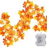 14.7ft 40 LED Thanksgiving Decorations for Home Autumn Garland Fall Decor, Thanksgiving Decor Fall Garland with Lights - 8 Bl