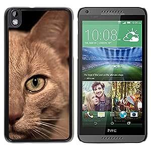 PC/Aluminum Funda Carcasa protectora para HTC DESIRE 816 Burmese American Shorthair British Cat / JUSTGO PHONE PROTECTOR