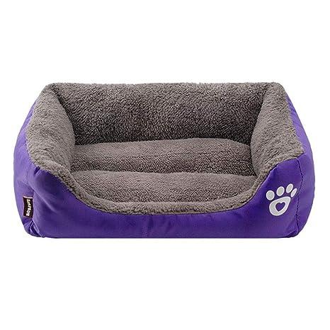 Amazon.com: GTTBS - Cama para perro, cálida, color caramelo ...