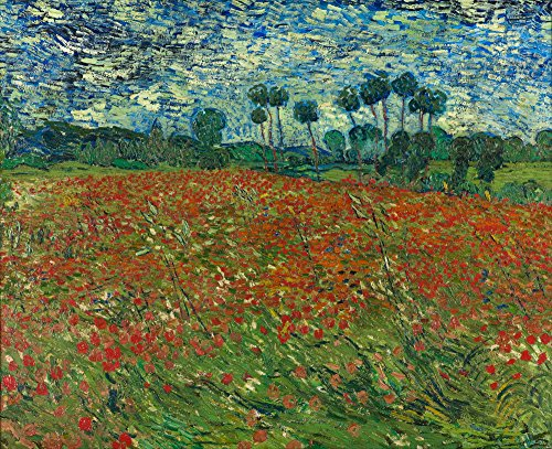 (Berkin Arts Vincent Van Gogh Giclee Canvas Print Paintings Poster Reproduction (Poppy Field 2))