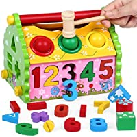FunBlast Shape Sorter Wisdom House with Pounding Bench Ball and Hammer for Kids,Educational Digital Number, Shapes and Symbol Cognition Wisdom House, Wooden Puzzle Game Toy