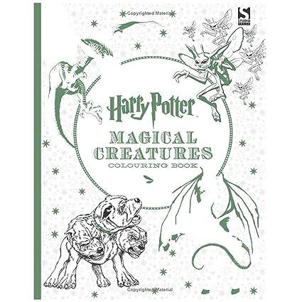 Yszdm Livre De Coloriage Pour Adultes Secret Garden