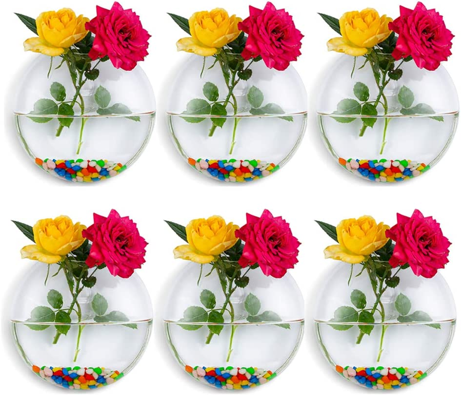 Wall Hanging Glass Planters 6Pcs Oblate Shape Plant Pots Terrarium Container Vase with 6.36 OZ Colorful Stones Indoor Outdoor for Home Garden Office Wedding