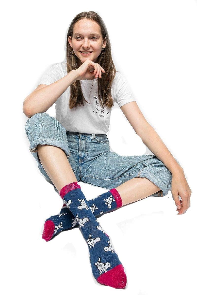 mix colore blu navy cane 2 paia calzini da donna con bulldog francese viola bamb/ù LilyRosa/®