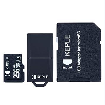 Tarjeta de Micro SD 256GB MicroSD Compatible con Samsung Galaxy S9 Plus S9 S8 S7 S6 S5 S4 S3 S10, J9 J8 J7 J6 J5 J3 J2 J1, A9 A8 A7 A6 A6+ A5 A4 A3, ...