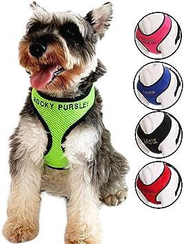 Oncpcare - Arnés para Perro con Nombre y número de teléfono ...