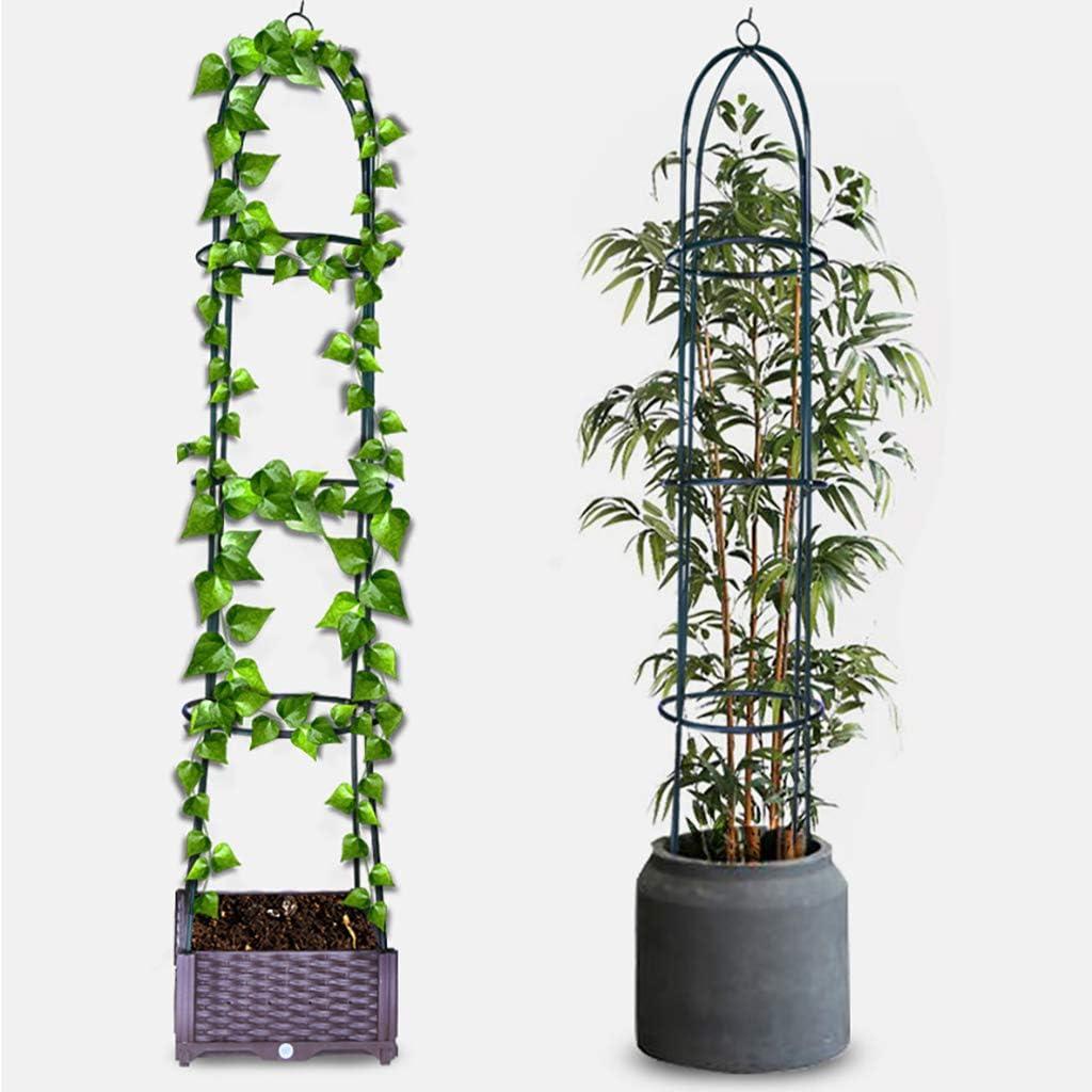 Enrejado de obelisco de jardín para plantas trepadoras Soporte de ...