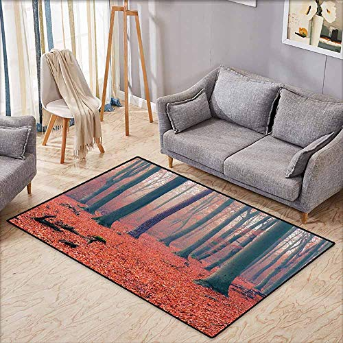 Rectangular Rug,Forest Foggy Forest Tree Trunks Leaves for sale  Delivered anywhere in Canada