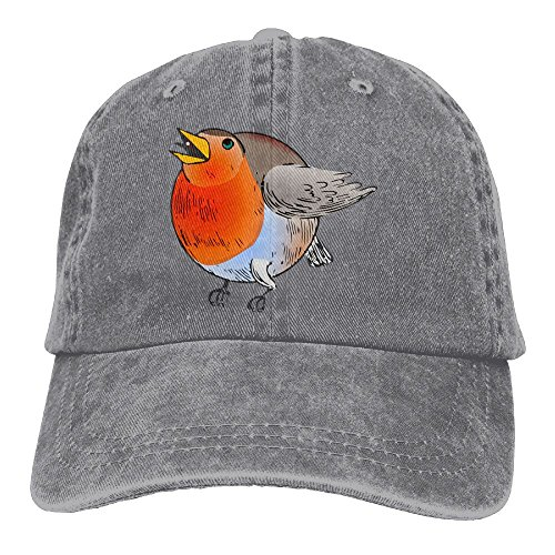 Hainingshihongyu Cartoon Fat Bird Baseball Caps Adult Sport Cowboy Trucker Hats Adjustable - Nc Jacksonville Clothing In Stores