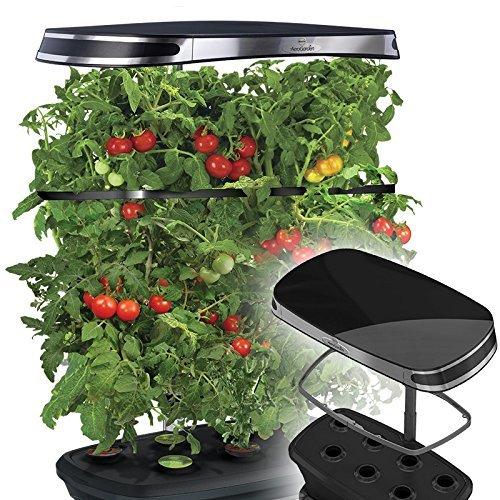 (Miracle-Gro AeroGarden Extra LED Indoor Garden with Gourmet Herb Seed Kit and Bonus Cherry Tomato Seed Pod Kit)