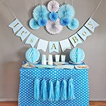 Baby Shower Decorations for Boy, It's A Boy, Banner, Tissue Paper, Fans, Honeycomb Paper Balls, Tassels, Blue, 13pcs., Gold Foil, Hanging, Party Supplies, Indoor/Outdoor