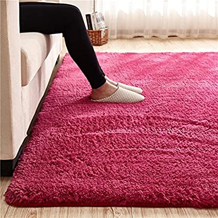 2 x 3, Rose Super Soft Rose Area Rug Kids Rugs Artic Velvet Mat with Plush and Fluff for Bedroom Floor Bathroom Pets Home Hotel Mat Rug