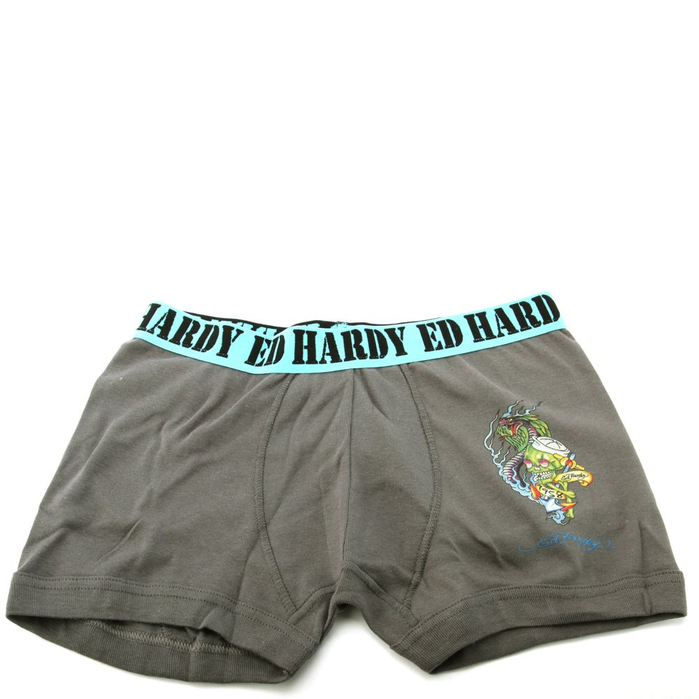 Ed Hardy Kids Big Boys Boxer Brief Kids Boxer Briefs