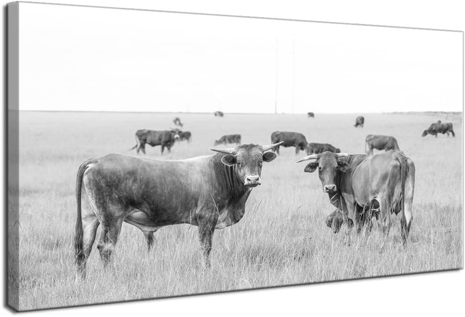 LevvArts - Animal Canvas Wall Art Cow Picture Black and White Cattle in Stowe Vermont USA Landscape Photo Painting Prints Modern Home Kitchen Living Room Wall Decoration Framed and Easy Hanging