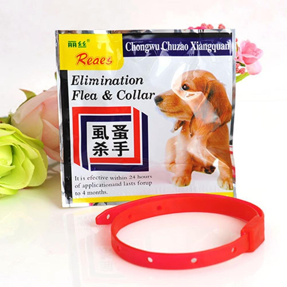 juxinuk 1pc Pet Anti Mosquito Anti Flea Collar Anti Tick Band (L): Amazon.es: Productos para mascotas